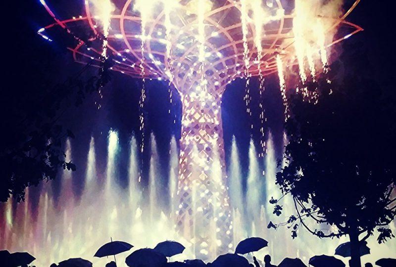 albero expo ombrelli