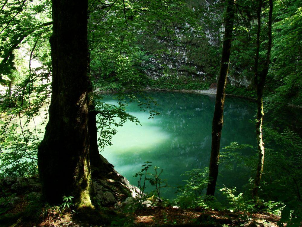 skrivnostno_Divje_jezero_-foto_Samo_Trebiûan_2958_orig
