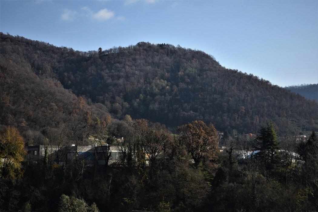 Dettaglio della Rubber valley nella zona di Adrara San Martino, in provincia di Bergamo . © Stefania Prandi