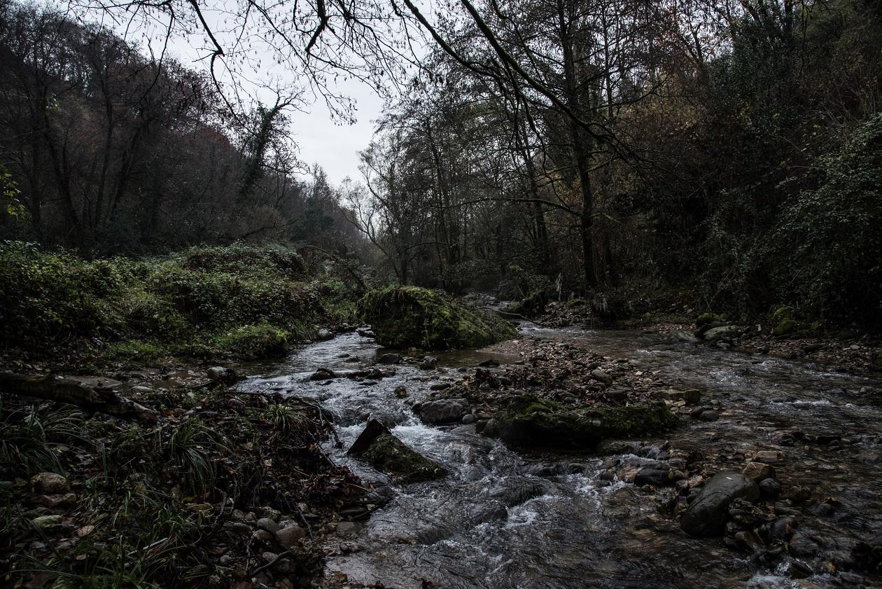 Il torrente Uria. © Stefania Prandi