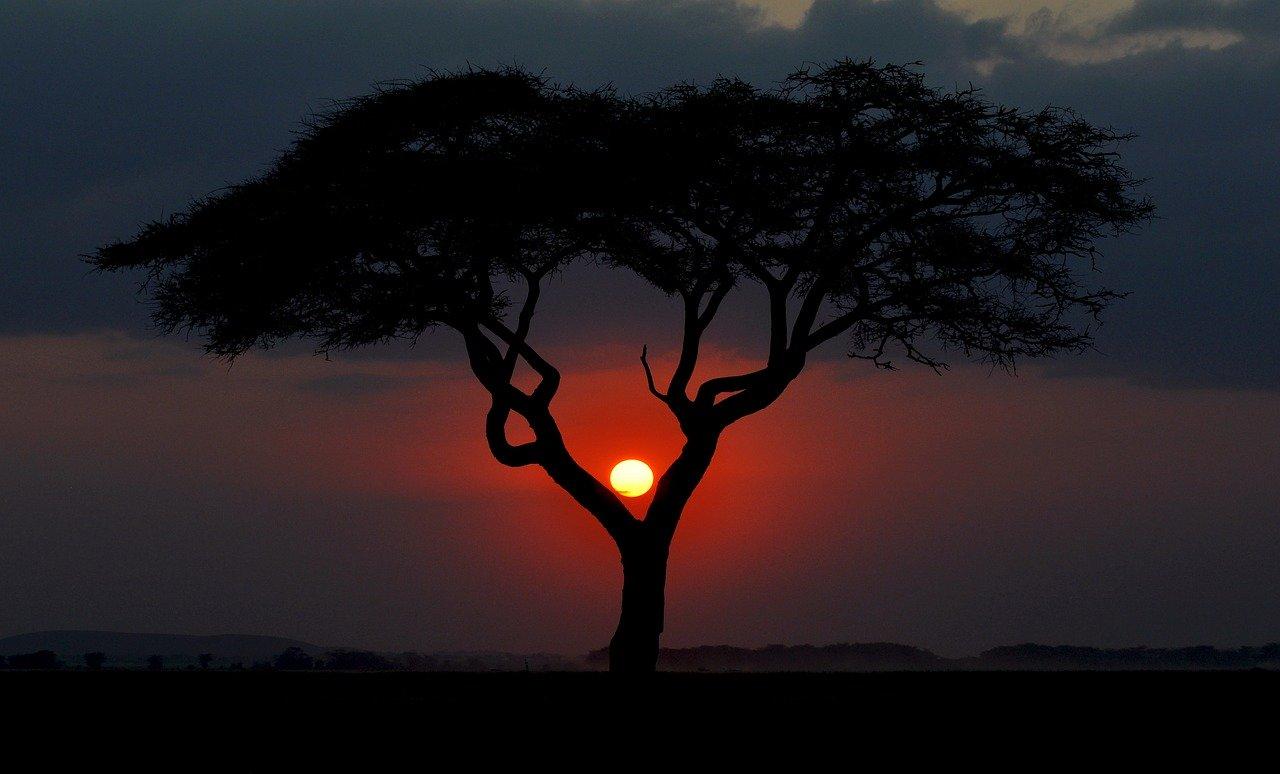 Kenya-tramonto